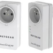 Netgear XAVB5401-100FRS Pack de 2 Adaptateurs CPL Ethernet Powerline 500 Mbit/s Nano avec Prise femelle intégrée